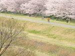 image/2009-03-31T21:31:133